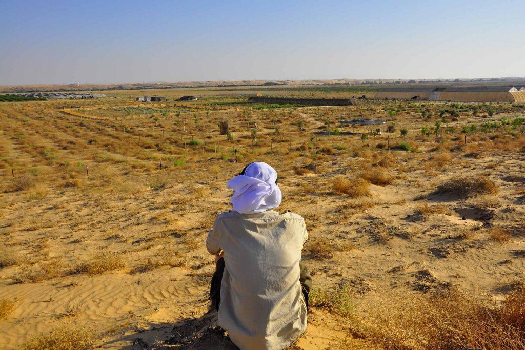 חוות שירת המדבר