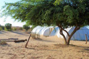 האוהל הגדול בחוות שירת המדבר